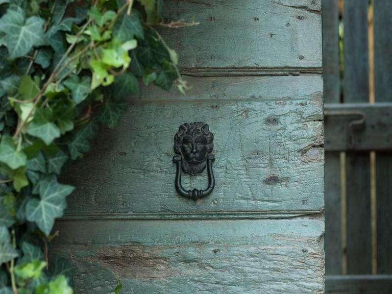 tuscia porta con leone